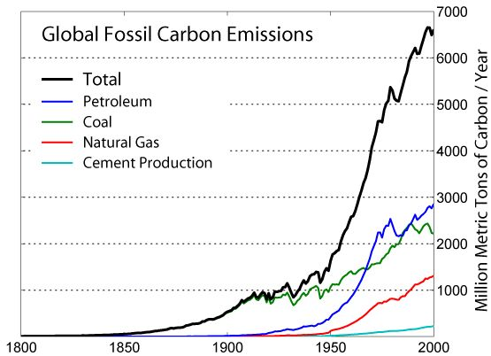 Global Carbon Emission by Type